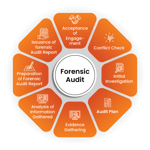 Forensic Audit Process
